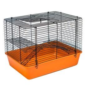"""Клетка для мелких грызунов """"Шура-2"""", 2 этажа, складная, 43 х 31 х 33,5 см, микс цветов"""