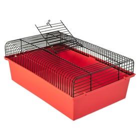 """Клетка для грызунов """"Джексон-1"""", без наполнения, 37 х 26 х 14 см, микс цветов"""