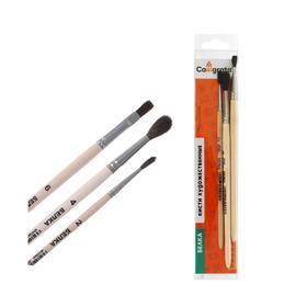 Набор кистей Белка 3 штуки, Calligrata №5 (круглые №: 2, 4; плоская №6), деревянная ручка, в пенале