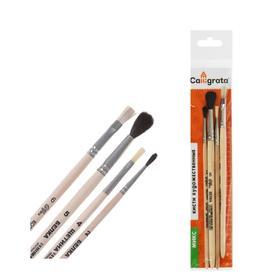 Набор кистей Микс 4 штуки, Calligrata №2 (круглые: Белка №2, Белка №5, Щетина №4; плоская: Коза №6), деревянная ручка
