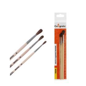 Набор кистей Пони 3 штуки, Calligrata №2 (круглые №: 2, 3, 4), деревянная ручка
