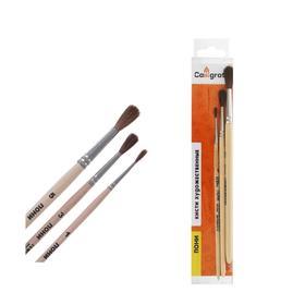 Набор кистей Пони 3 штуки, Calligrata №1 (круглые №: 1, 3, 5), деревянная ручка, в пенале