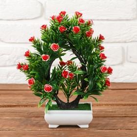 """""""Bonsai Tree double rosettes"""" 18*24 cm, mix"""
