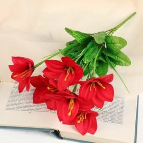 """Bouquet """"Amsonia"""" 31 cm, mix"""