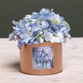 Металлическое кашпо для цветов Be happy, 10 × 7.5 см