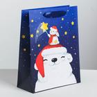 Пакет ламинированный вертикальный «Новогоднее чудо», MS 18 x 23 × 8 см