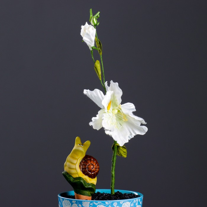 """Ороситель для домашних растений """"Улитка"""" микс 4 вида"""