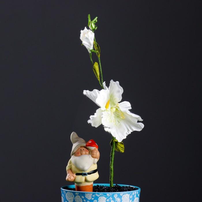 """Ороситель для домашних растений """"Гном-2"""" микс 4 вида"""