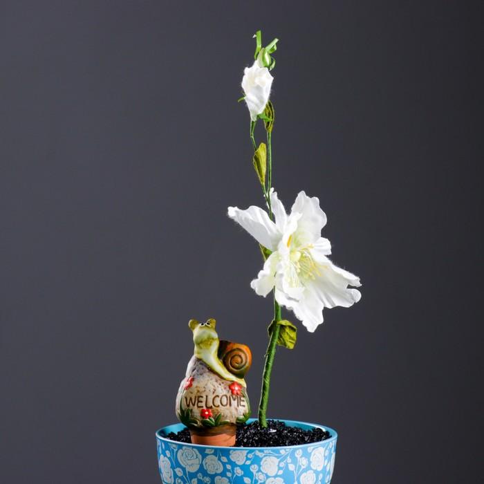 """Ороситель для домашних растений """"Улитка на камне"""" микс 4 вида"""