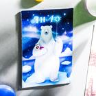 "Magnet bilateral ""YANAO"" (bear), 5.5 x 8 cm"