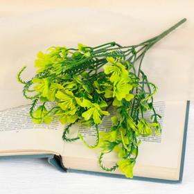 "A bouquet of ""wild flowers"" 28 cm, mix"