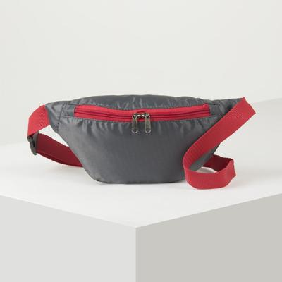 Pouch belt, division zipper, color gray