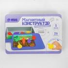 """Магнитный конструктор """"Изучаем овощи и фрукты"""" - фото 105527345"""