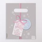 Пакет «Розовый», полиэтиленовый с вырубной ручкой, 17 х 20 см, 30 мкм - фото 308983685