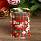 "Piggy Bank metal ""Christmas package"" 7,3x9,5 cm"