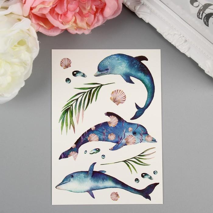 "Татуировка на тело ""Miami Tattoos Dolphins"""