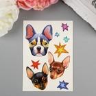 """Татуировка на тело акварельная """"Miami Tattoos Dogs"""""""