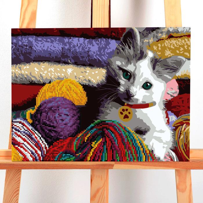 Картина по номерам с алмазной вышивкой без подрамника «Кот», 30 х 40 см