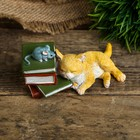 "Сувенир полистоун миниатюра ""Кот уснул на книжках"" 3,5х9х5 см"
