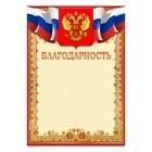 """Благодарность """"Универсальная"""" символика РФ, красная рамка"""