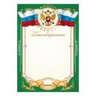 """Благодарность """"Универсальная"""" символика РФ, зелёная рамка"""