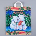 """Пакет """"Белые медведи"""", полиэтиленовый с петлевой ручкой 38 х 42 см, 40 мкм"""
