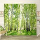 Фотошторы «Березовый лес 2», размер 145 × 260 см, габардин