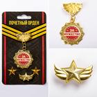 Наградной набор орден и значок «За мужество», звезда 11 х 10 см