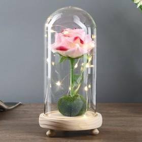 """Ночник """"Розовая роза"""" LED 3ААА 10х10х20 см"""