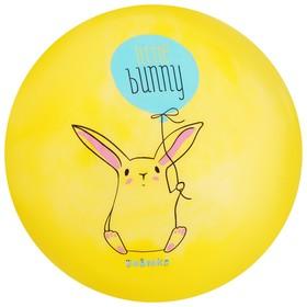 Мяч детский «Маленький заяц», d=22 см, 60 г