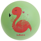 Мяч детский «Фламинго», d=22 см, 60 г