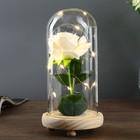 """Лампа настольная """"Роза белая"""" LED 3ААА 10х10х20 см."""