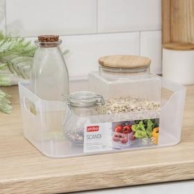 Корзина для хранения econova Scandi, 3,1 л, 24×17×9 см, цвет прозрачный