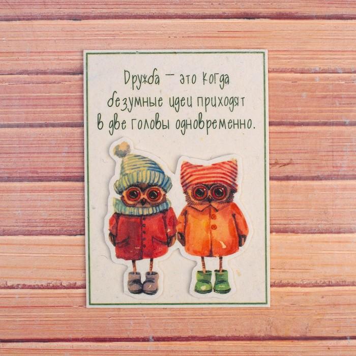 Открытка «Дружба», совушки, 10,5×14,8 см, войлок