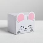 Коробка «Мышка», 2.5 × 2.5 × 3.5 см