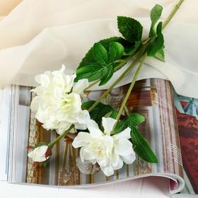 Flowers artificial Hibiscus 8*61 cm, white