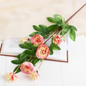"Artificial flowers ""Abutilon lush"" 5*57 cm, pink"