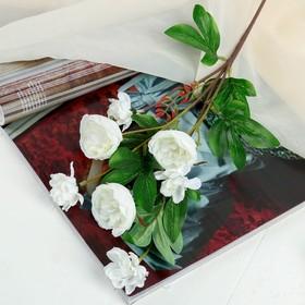 "Artificial flowers ""Abutilon lush"" 5*57 cm, white"