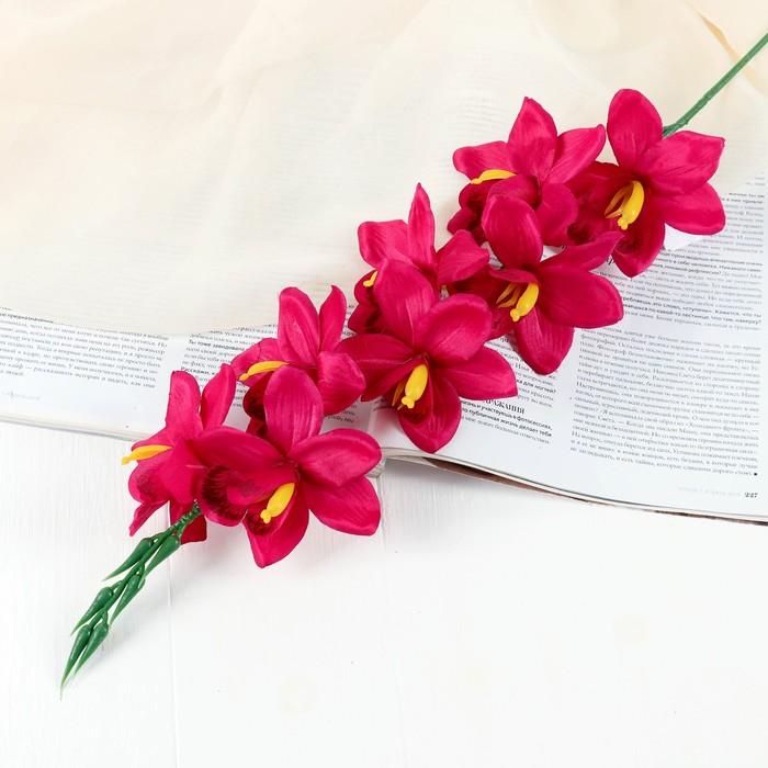 """Цветы искусственные """"Камбрия"""" 9*71 см, малиновый"""