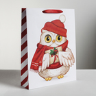 Пакет ламинированный вертикальный «Новогодняя сова», L 31 × 40 × 9 см