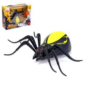 Паук «Чёрная вдова», работает от батареек, световые и звуковые эффекты, МИКС
