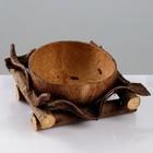 Кашпо «Кокос», 20×20×9 см, кокос, дерево