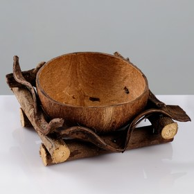 {{photo.Alt    photo.Description    'Кашпо «Кокос», 20×20×9 см, кокос, дерево'}}