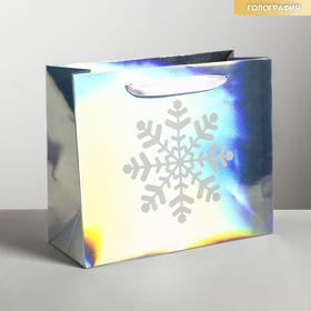 Пакет голографический горизонтальный «Снежинка», ML 27 × 23 × 11.5 см
