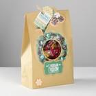 Пакет подарочный «Новогодний подарочек», набор для создания, 15.5 × 28.5 см