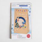 Набор по декорированию подарочного пакета «Ретро», 15.5 × 28.5 см