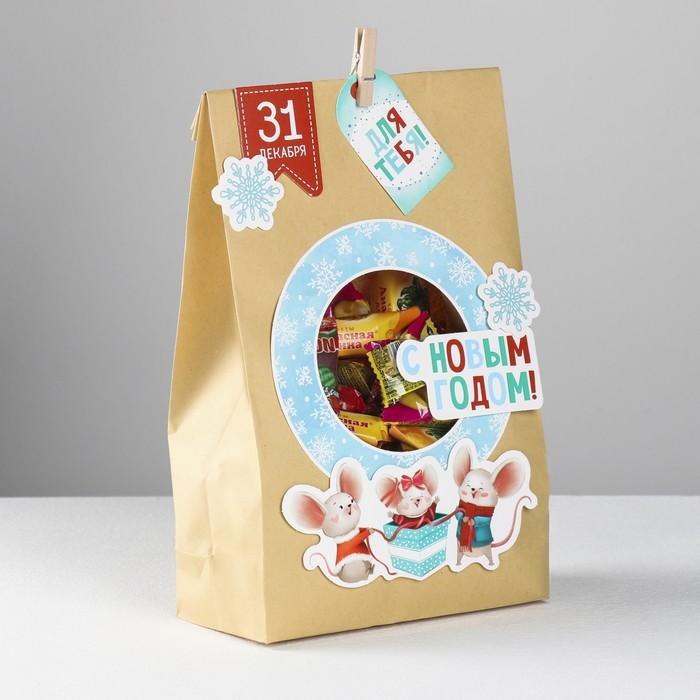 Пакет подарочный «Мышки для тебя», набор для создания, 15.5 × 28.5 см