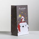 Пакет подарочный без ручек «Волшебства в Новом году», 10 × 19.5 × 7 см