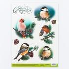 Декупажная карта «Птицы», 29.7 × 21 см