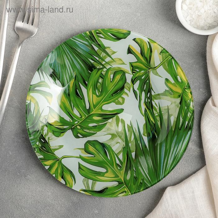 """Dessert plate """"Fern"""" 20 cm"""